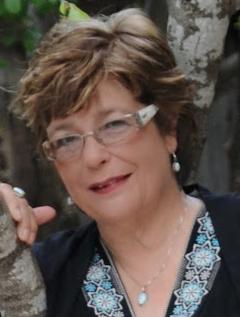 Diane Fanning image