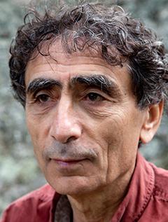 Gabor Maté, M. D image