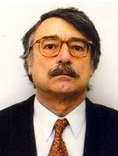 Ignacio Ramonet image