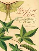 Teaching the Trees