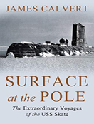 Surface at the Pole