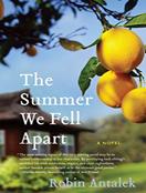 The Summer We Fell Apart