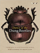 Dance of the Dung Beetles