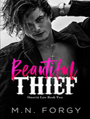 Beautiful Thief