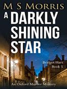 A Darkly Shining Star