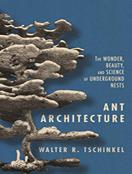 Ant Architecture