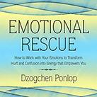 Emotional Rescue