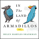 In the Land of Armadillos