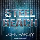 Steel Beach