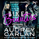 Biker Beauties Volume 2