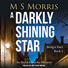 A Darkly Shining Star